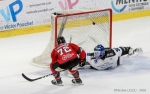 Ligue Magnus : 32ème journée : Amiens  vs Gap