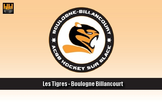 Photo hockey ACBB recrute un Entraîneur Hockey Mineur (CDI) - Hockey Mineur : Boulogne (ACBB) (Les Tigres)