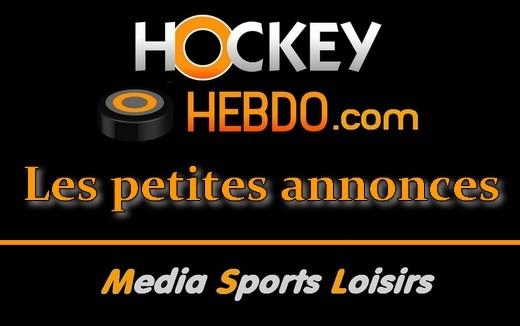 hockey sur glace   gardien 1998 cherche club