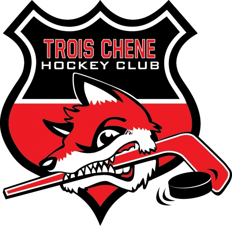 Photo hockey HC3C - Mars 2020 - Suisse - Divers