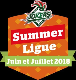 Photo hockey Les Jokers Lancent leur ligue d'été ! - Division 1 : Cergy-Pontoise (Les Jokers)