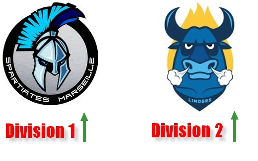Photo hockey Marseille en D1, Limoges en D2 - Hockey en France
