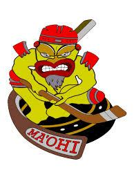 Photo hockey Roller : Les Maohis de Pessac recrutent  - Roller Hockey
