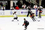 Photo hockey match Nice - Amiens  le 30/10/2016