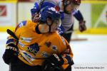 Photo hockey reportage Amical : Dijon vs Lyon