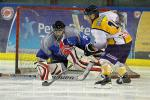Photo hockey reportage Amical : Lyon vs Chamonix
