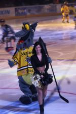 Photo hockey reportage Finale Coupe de France 2011 : Reportage photos 1