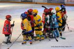 Photo hockey reportage Finale Coupe de France 2011 : Reportage photos 4