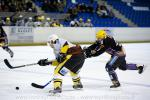 Photo hockey reportage PO D3 : play-off : Des Hiboux trop tendres