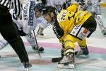 Photo hockey reportage Trophée des champions aux Dragons